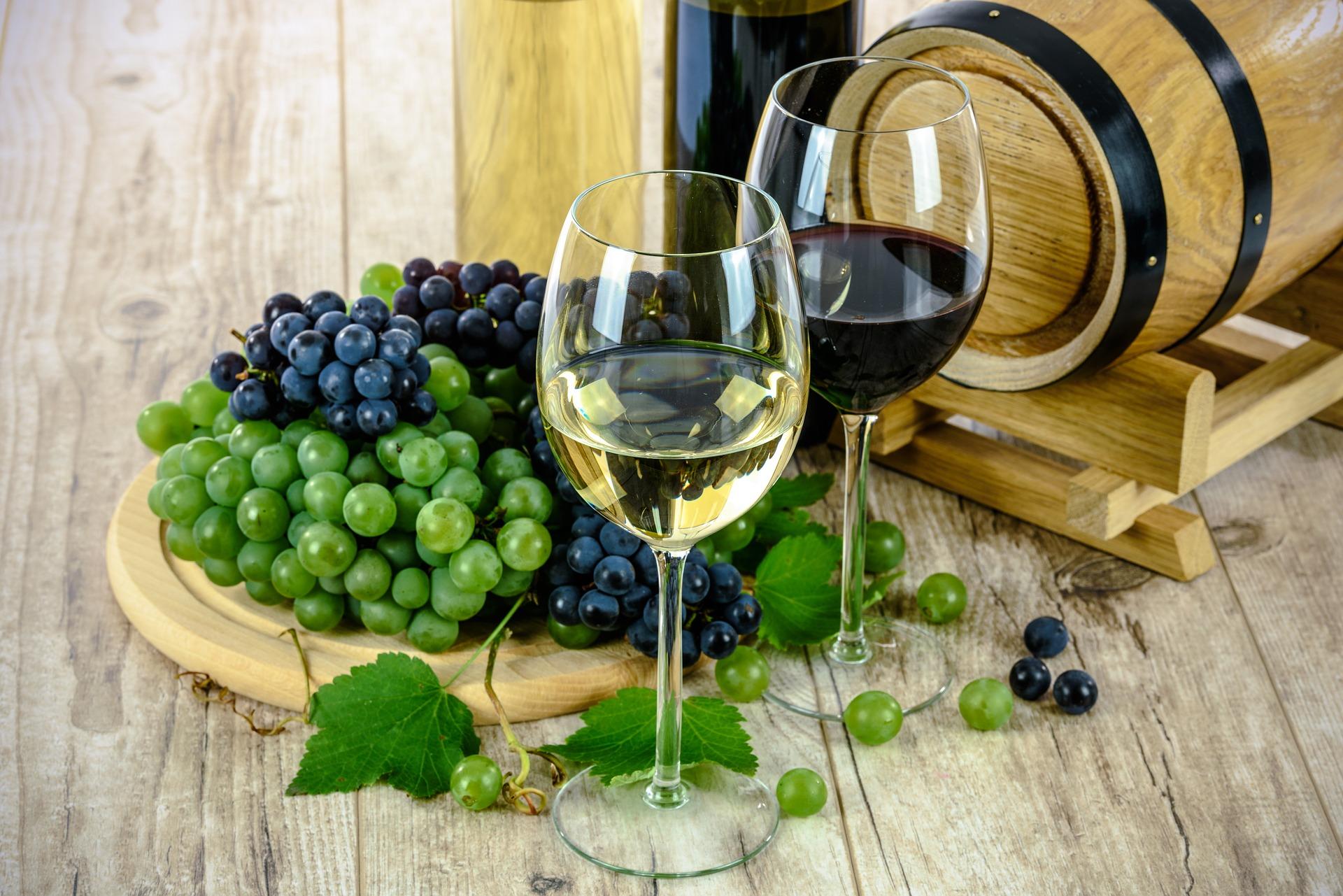 wine tasting Catania