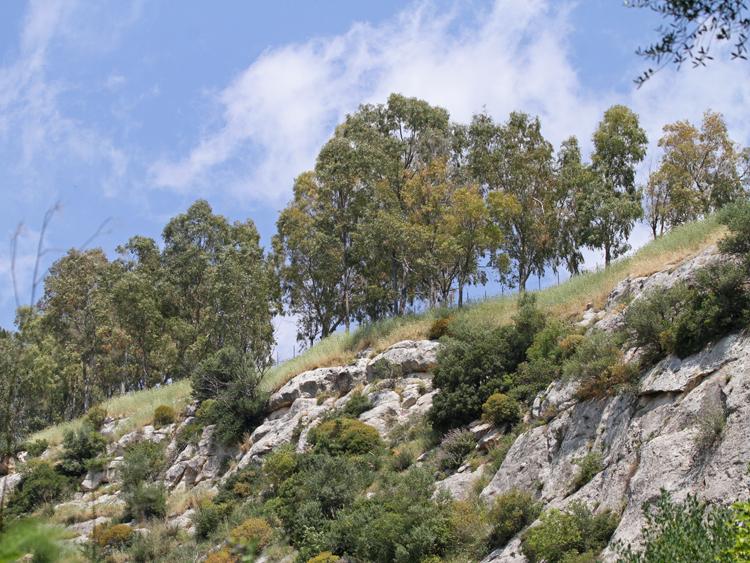 escursione noto sicilia