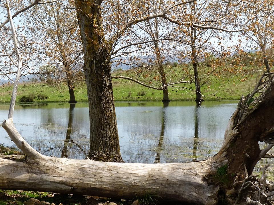 lago di cesarò